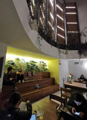 Cafeterías en La Condesa