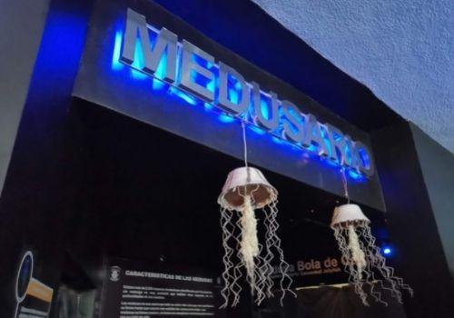 Medusario de Mazatlán.