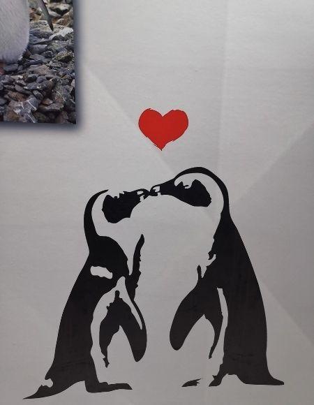 parejas pingüinos corazón
