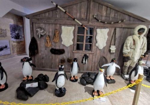Pingüinario más grande de México